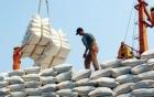 """""""Cấm cửa"""" tư nhân bán gạo vào thị trường tập trung"""