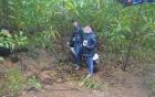 Thừa Thiên – Huế: Lừa chở đi lấy quà, rồi đưa nạn nhân vào rừng cướp - hiếp