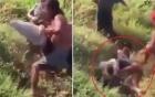 Clip: Người đàn ông bị cá đánh vỡ mặt