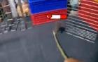 [Clip]: Thanh niên truy sát bầy chuột 'nợ dầu phải trả bằng máu'