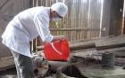 Chủ động triển khai công tác y tế khắc phục hậu quả mưa lũ