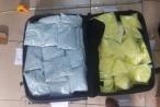 Cục Cảnh sát điều tra tội phạm về ma tuý thu giữ 450 kg ma tuý các loại