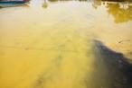 Thừa Thiên - Huế: Đã tìm ra nguyên nhân xuất hiện dải nước màu vàng ở cảng biển Chân Mây