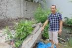 Thái Nguyên: Mập mờ trong việc thu hồi đất, công dân kiện Chủ tịch UBND phường Phan Đình Phùng ra tòa