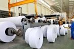 Ngành giấy Việt Nam tan giấc mơ 1 tỷ USD xuất khẩu?