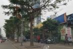 Hà Nội: Hàng nghìn m2 đất nông nghiệp bị 'xẻ thịt' thành nhà hàng tại phường Mễ Trì