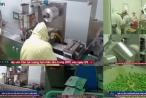 TPCN Tiến Hạnh: Nhà máy đạt chuẩn GMP, sản phẩm cam kết không có chất cấm