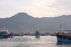 Xong quy hoạch tổng thể cảng Cà Ná sau khi tuýt còi dự án thép của tôn Hoa Sen