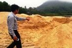 Nhiều bãi cát lậu trong 'vùng lõi' khu Chân Mây - Lăng Cô