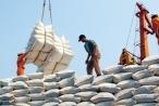 Bộ Công Thương xác minh thông tin 'Xin giấy phép xuất khẩu gạo phải tốn không dưới 20.000 USD'