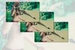 Bản tin Facebook ngày 19/8: Sự trở lại của 'Hotgirl thổ dân' trong tà áo dài