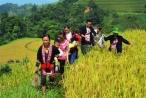 Chuẩn bị tổ chức ngày hội văn hóa dân tộc Dao toàn quốc tại Tuyên Quang