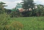 Kỳ 2 - Dân kêu cứu bị chiếm đất tại quận Bình Tân: Phường Bình Hưng Hòa bao che sai phạm?