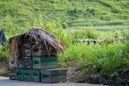 Hà Giang: Hy vọng được đền bù, các đối tượng tiếp tục quẳng thùng ong mật của người dân ra đường