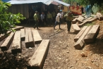 Quảng Nam: Tạm giam nguyên Giám đốc BQL rừng phòng hộ Sông Tranh