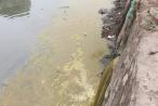 Trường Đại học Y Hà Nội lý giải vụ xả thải gây ô nhiễm, người dân kêu cứu