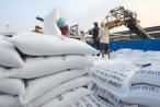 Audio Tài chính Plus: Xuất khẩu gạo tiếp tục khởi sắc
