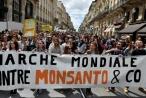 Dư luận quốc tế ủng hộ phán quyết của tòa án Mỹ với Monsanto