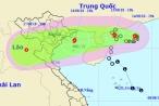 Tin nhanh ngày 15/8/2018: Tích cực kêu gọi tàu thuyền vào nơi tránh trú bão số 4