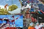 Slide - Điểm tin thị trường: Việt Nam vào nhóm 18 nền kinh tế hiệu quả vượt trội