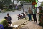 Chở gốc cây hoa hồng rừng, lái xe tải bị giữ ô tô 30 ngày