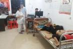 Nghệ An: Bị ong tấn công, 7 người phải nhập viện