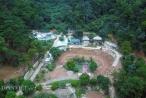 Hà Nội: Rừng phòng hộ Sóc Sơn đang bị 'xẻ thịt' từng ngày