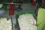 Thừa Thiên - Huế: Phát hiện 2 cơ sở sản xuất khuôn đậu sử dụng thạch cao