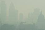 Ô nhiễm không khí chết người có thể thâm nhập vào máu