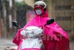 Dự báo thời tiết ngày 20/8: Tây Nguyên, Nam Bộ sẽ giảm bớt mưa giông