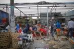 Chính thức xóa sổ 50 ki-ốt gần sân bay Tân Sơn Nhất, hàng trăm con chó mèo, thỏ con... không biết sẽ về đâu