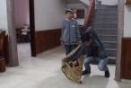 Chàng trai Bắc Giang gây bão cộng đồng mạng với tài ảo thuật 'cực ngầu'