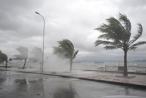 Bão số 3 đổ bộ đất liền, Bắc Bộ đến Quảng Bình xuất hiện mưa lớn