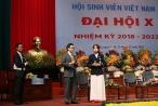Phó Thủ tướng: Không có tiếng nước ngoài nào là ngôn ngữ chính thức thứ 2,3 tại Việt Nam
