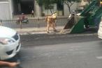 TP HCM: CSGT Tân Sơn Nhất dọn dẹp bùn đất rơi vãi trên đường