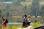 """Gia đình Cựu tổng thống  Obama """"du ngoạn"""" trên cánh đồng lúa ở Indonesia"""