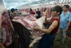 Bộ trưởng kêu gọi 'giải cứu' ngành chăn nuôi