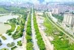 Ngày mai Hà Nội chặt hạ, đánh chuyển hơn 1.000 cây xanh trên đường Phạm Văn Đồng