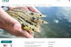 Những khoản nợ xấu khó đòi ở Công ty CP XNK Thủy sản Miền trung