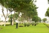 Đà Nẵng đạt danh hiệu Thành phố Xanh Quốc gia Việt Nam