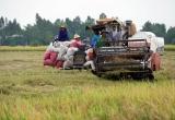 Hơn 1,7 triệu tỉ đồng đổ vào nông nghiệp