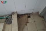 Hà Nội: Gần nghìn học sinh nhưng trường chỉ có 2 nhà vệ sinh