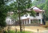 Địa ốc 7AM: Đất đình làng bị phân lô bán nền, xây biệt thự trong rừng cho… công nhân?