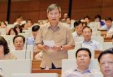 GS. Nguyễn Anh Trí: 'Quốc hội đổi mới để dân chủ hơn'