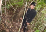 Quảng Bình: Bắt hai đối tượng ngang nhiên làm thịt Sơn dương trong rừng 'cấm'