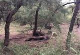 Thừa Thiên Huế: Tá hỏa phát hiện cụ ông chết cháy trên cồn cát