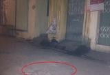 Hà Nội: Nam sinh Học viện Nông Nghiệp bị đâm thấu bụng tại cửa xóm trọ