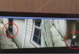 Cảnh báo: Clip người lạ manh động bắt cóc trẻ em ngay trước cửa nhà bất thành