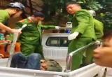 Thanh Hoá: Công an nổ súng bắt kẻ 'ngáo đá' cầm lưỡi lê uy hiếp con tin