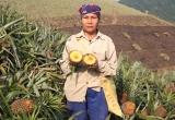 Lào Cai: Đình chỉ hoạt động nhà máy luyện kim gây ô nhiễm môi trường